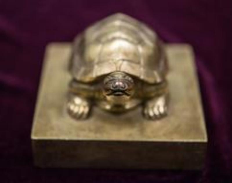 the-fincen-files/Turtle.jpg