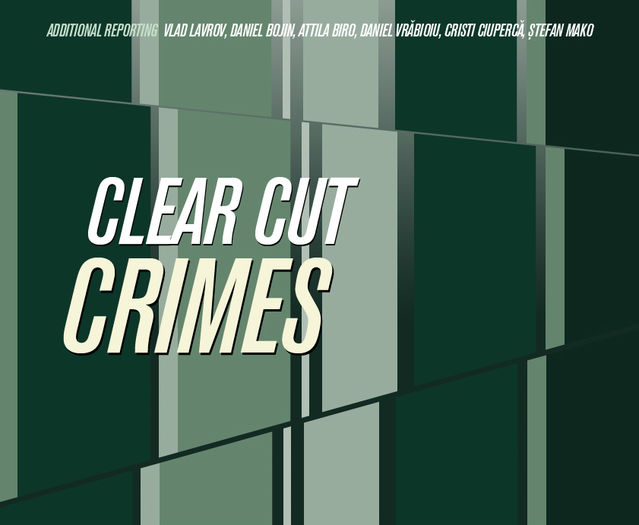 Clear Cut Crimes