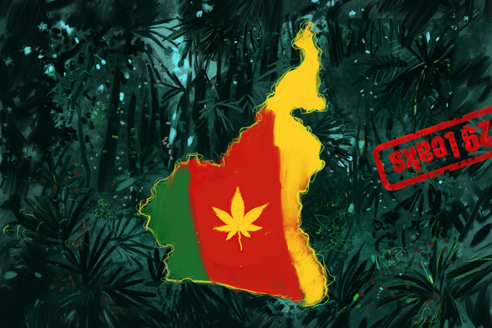 Cameroon's Cannabis Plans Go Up in Smoke