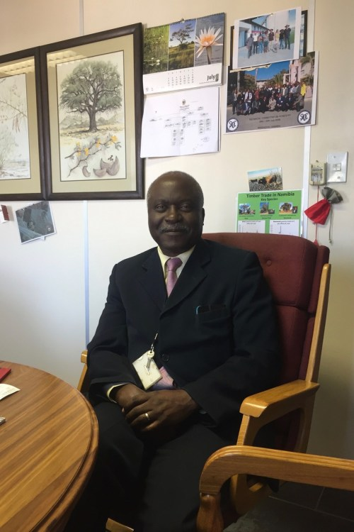 Director of Forestry Joseph Hailwa. (Credit: John Grobler)