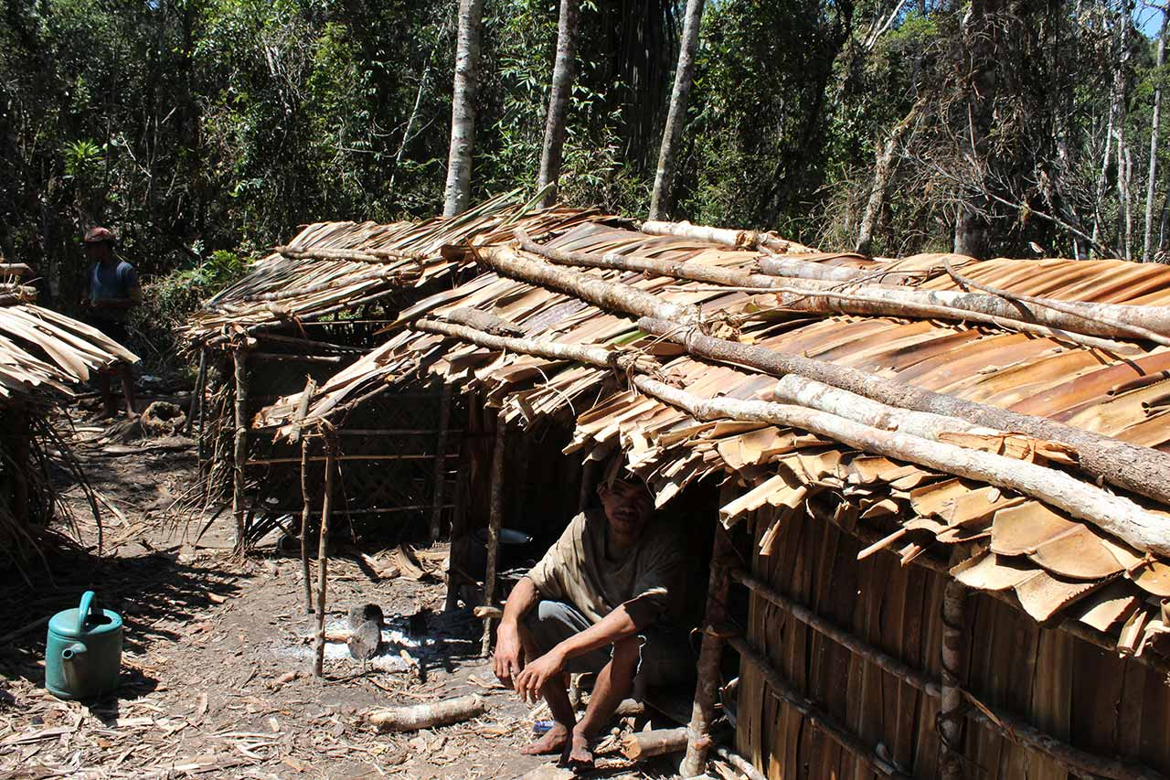 A logger in the Sava Region, Madagascar. Credit: OCCRP