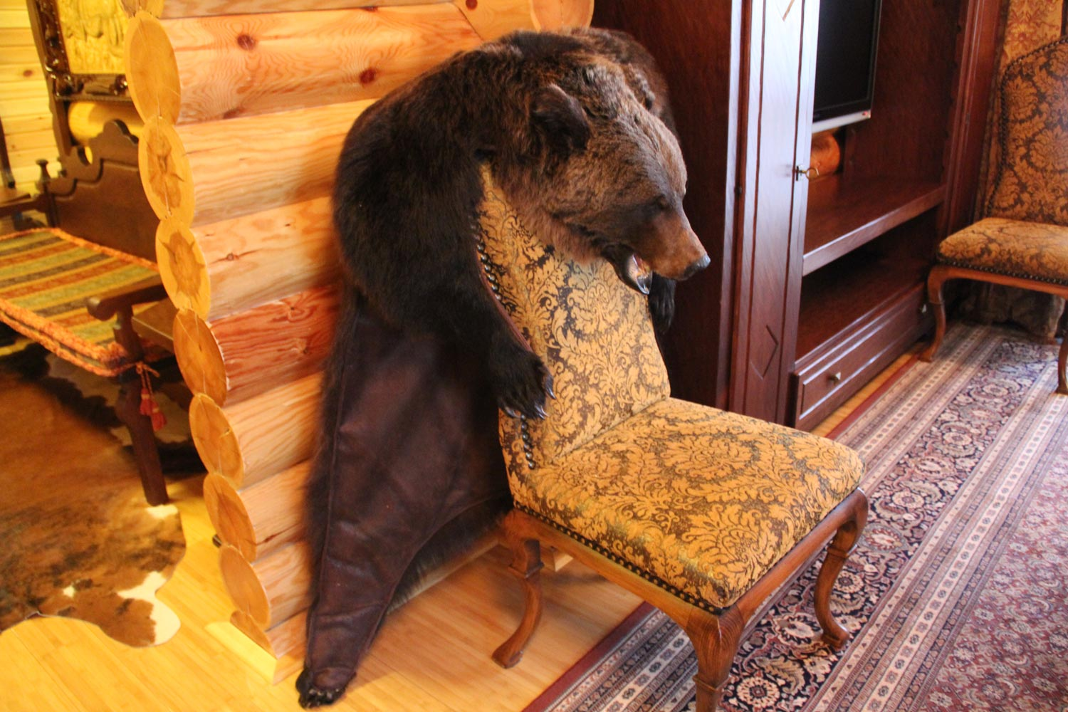 A Bear Chair Is One Of Many Exclusive Furniture Items Created For Kedr, An  Exclusive Hunting Society Associated With Former President Viktor  Yanukovych.
