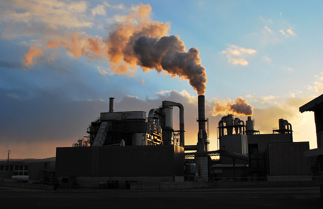 Carbon credits are in high demand from industrial corporations.